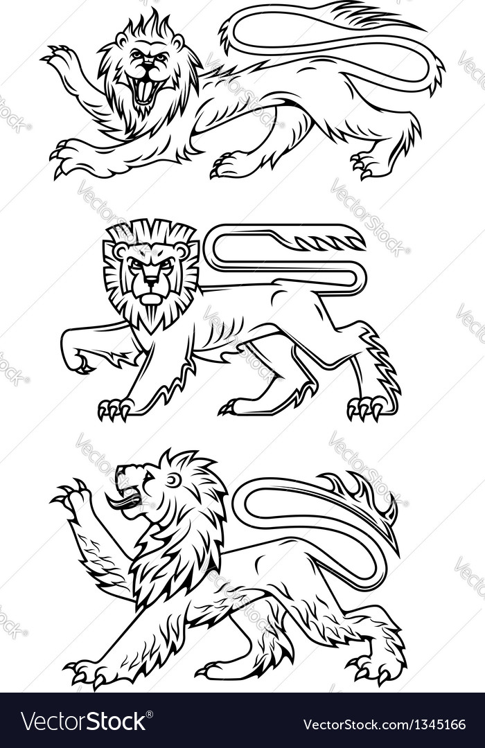 Powerful lions and predators vector
