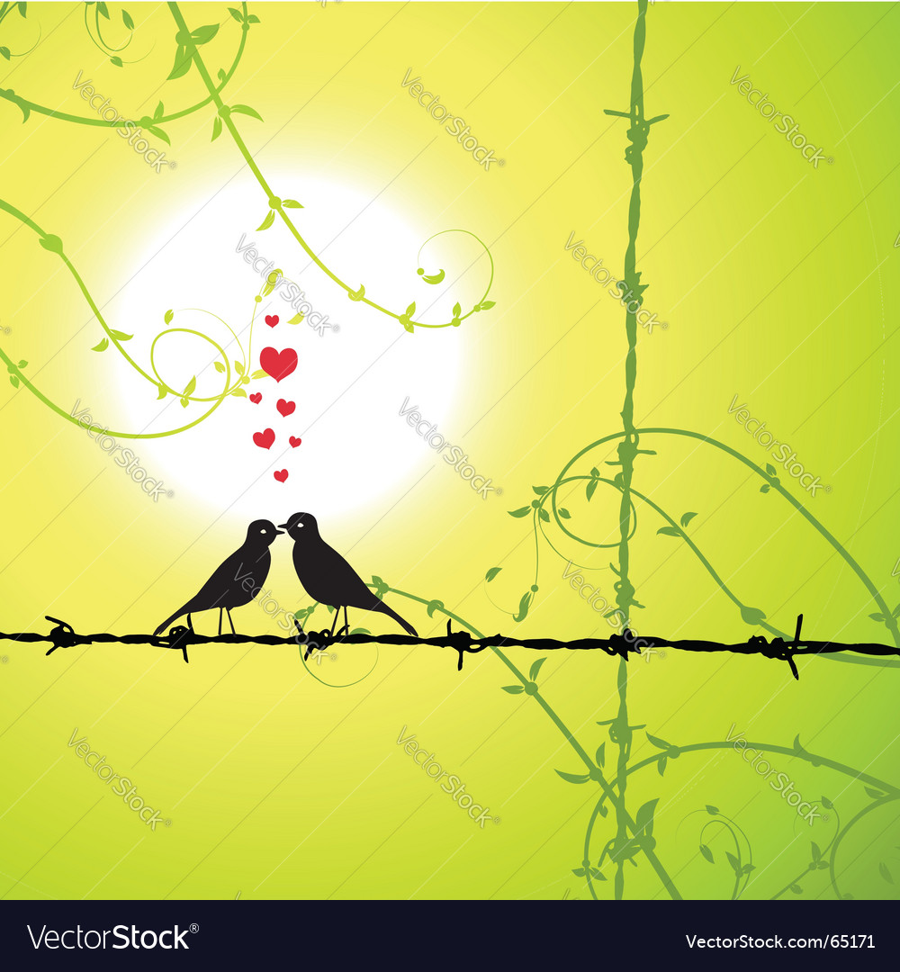 Love birds kissing vector