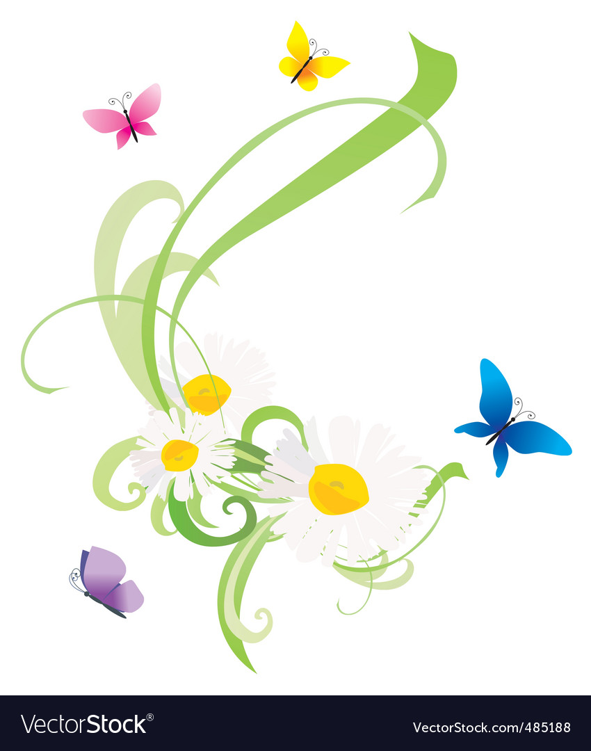 Daisy flowers and butterflies vector