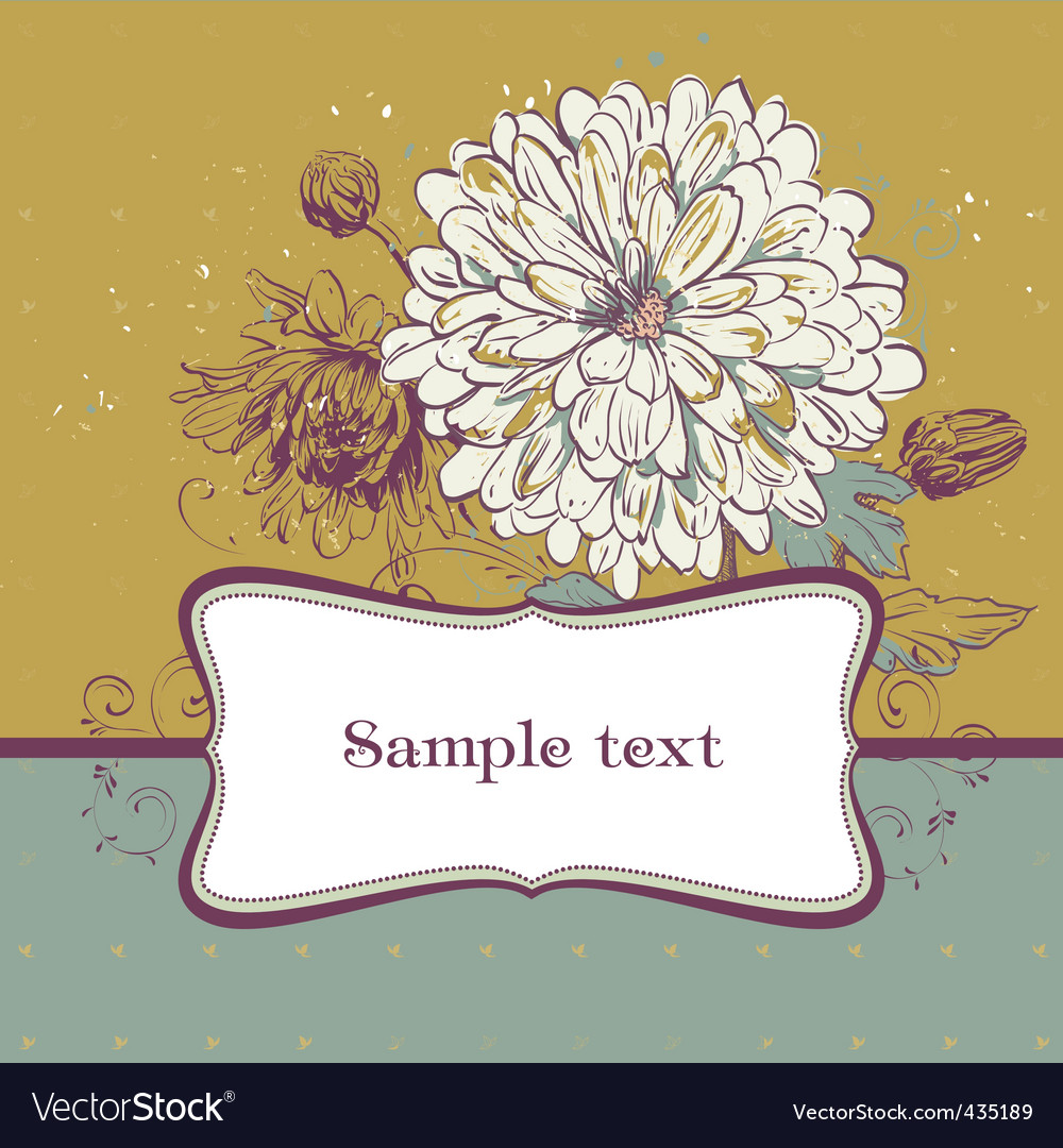 Blooming chrysanthemums vector