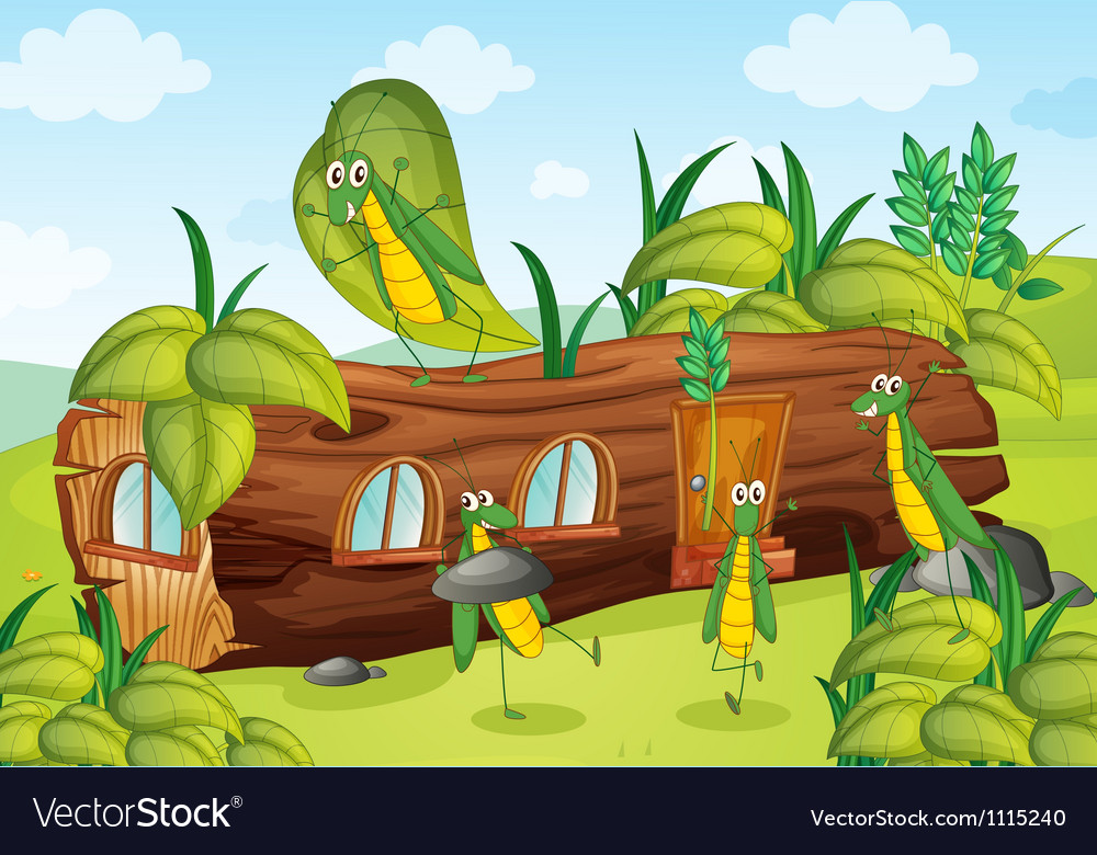 Grasshoppers and a house vector