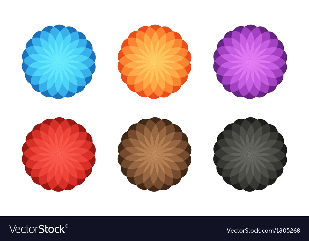 Colorful foto logo 6in1 vector
