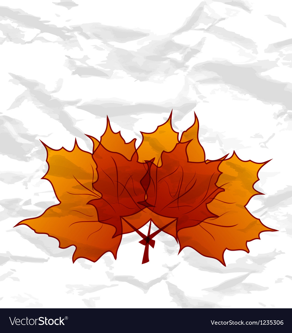 Autumnal maple leaves crumpled paper texture vector