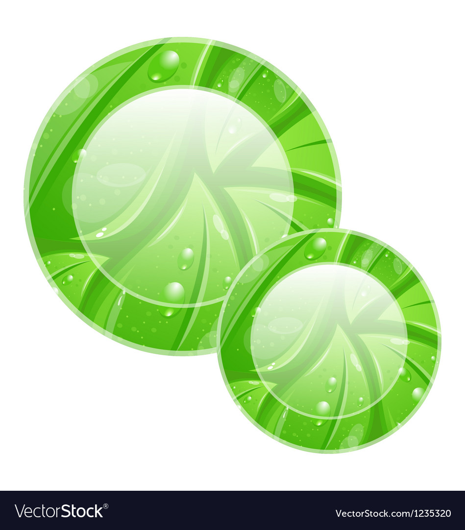 Eco friendly icon for web design leaves texture vector