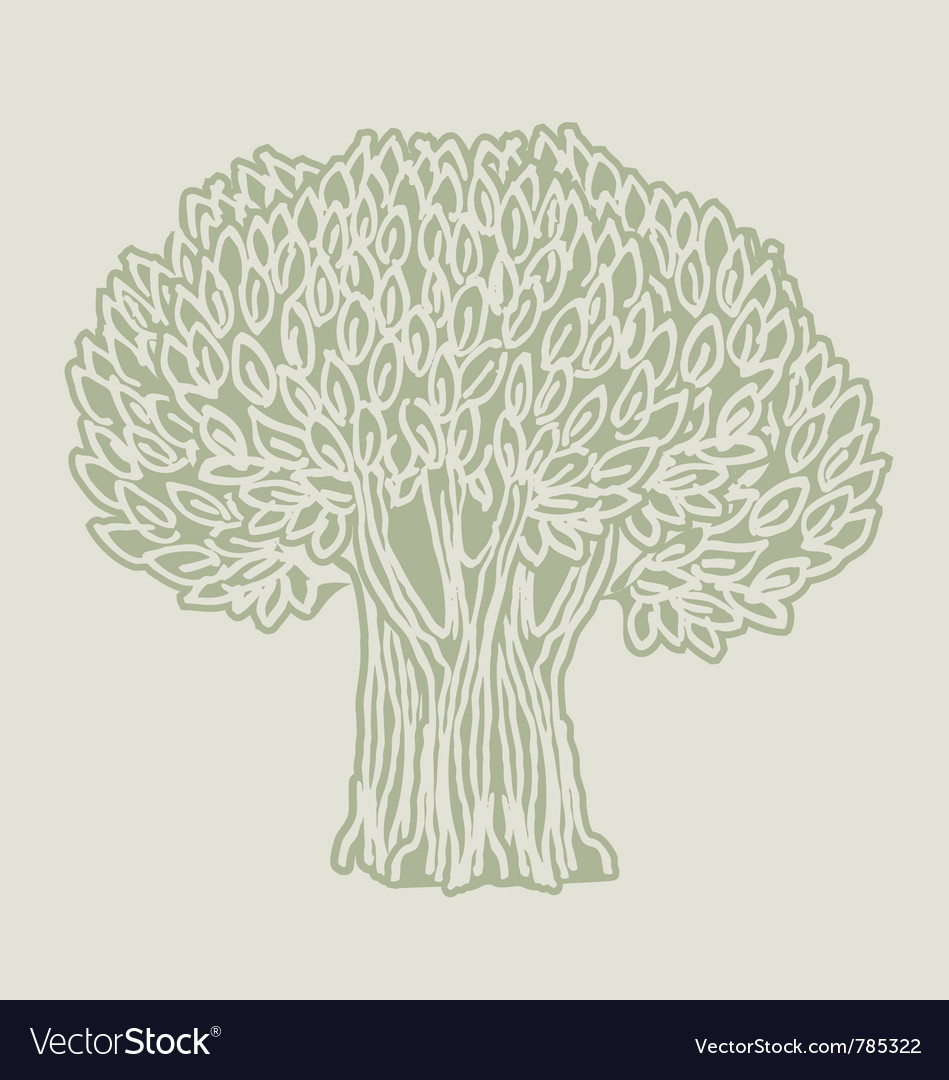 Olive tree poster vector