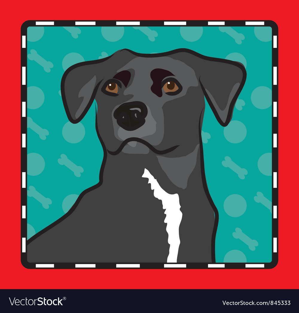 Mixed breed cartoon vector