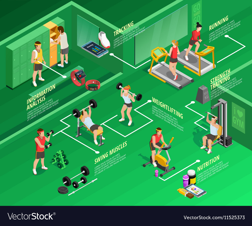 Isometric Exercises Equipment: Gym Isometric Infographics Vector By Macrovector