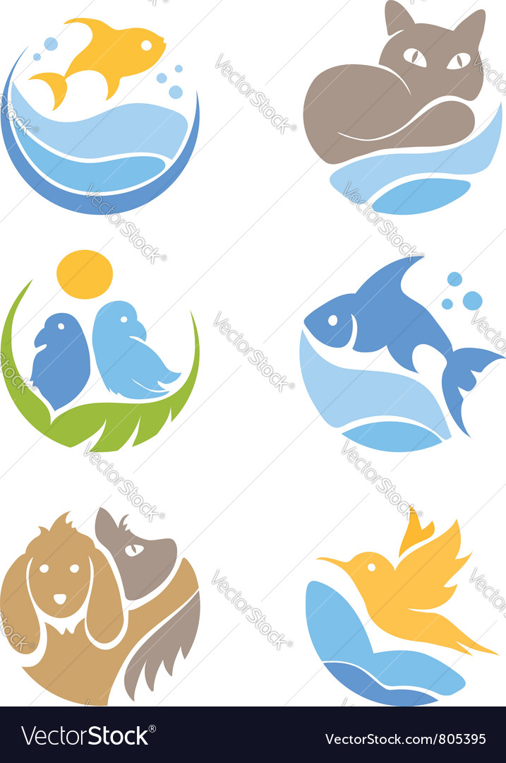 A set of icons  pets vector