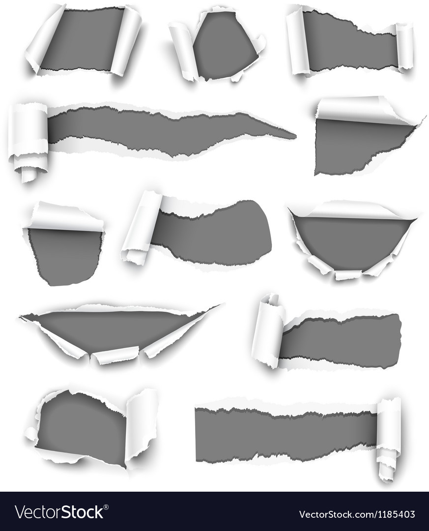 Torn gray paper vector