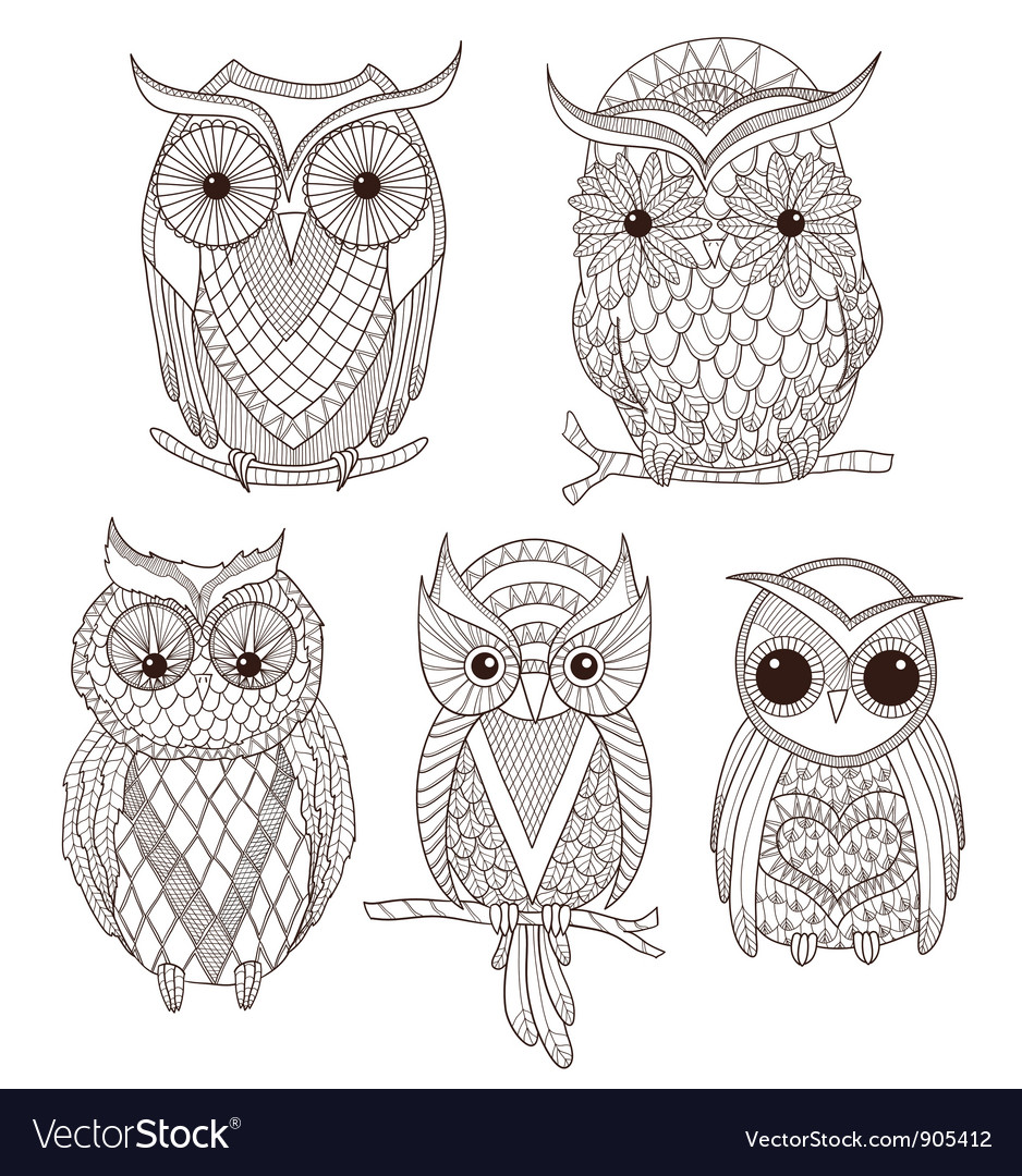 Set of cute owls vector