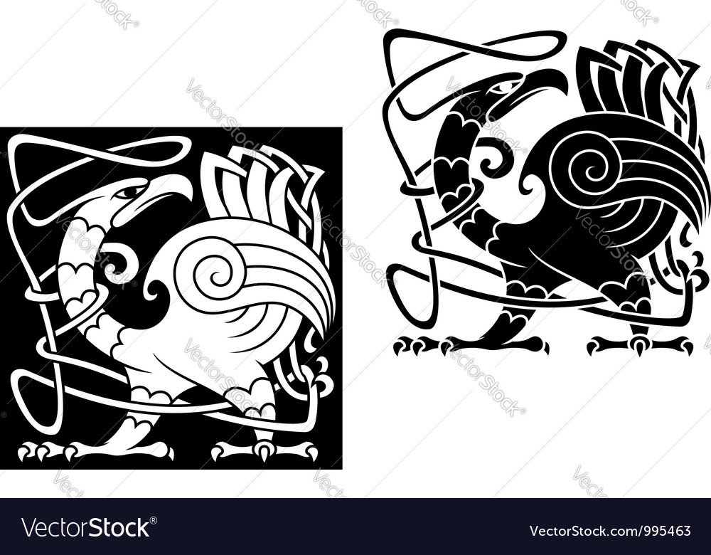 Angry bird in celtic style vector
