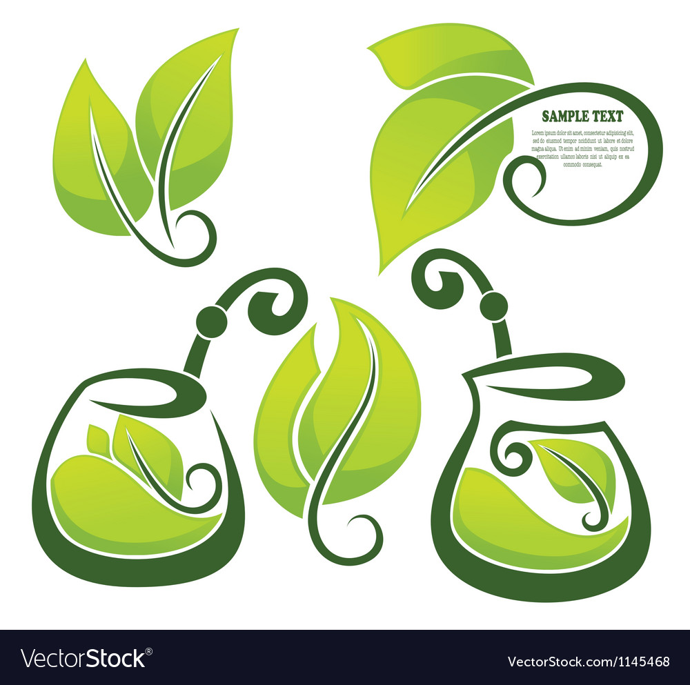 Healthy herbal tea vector