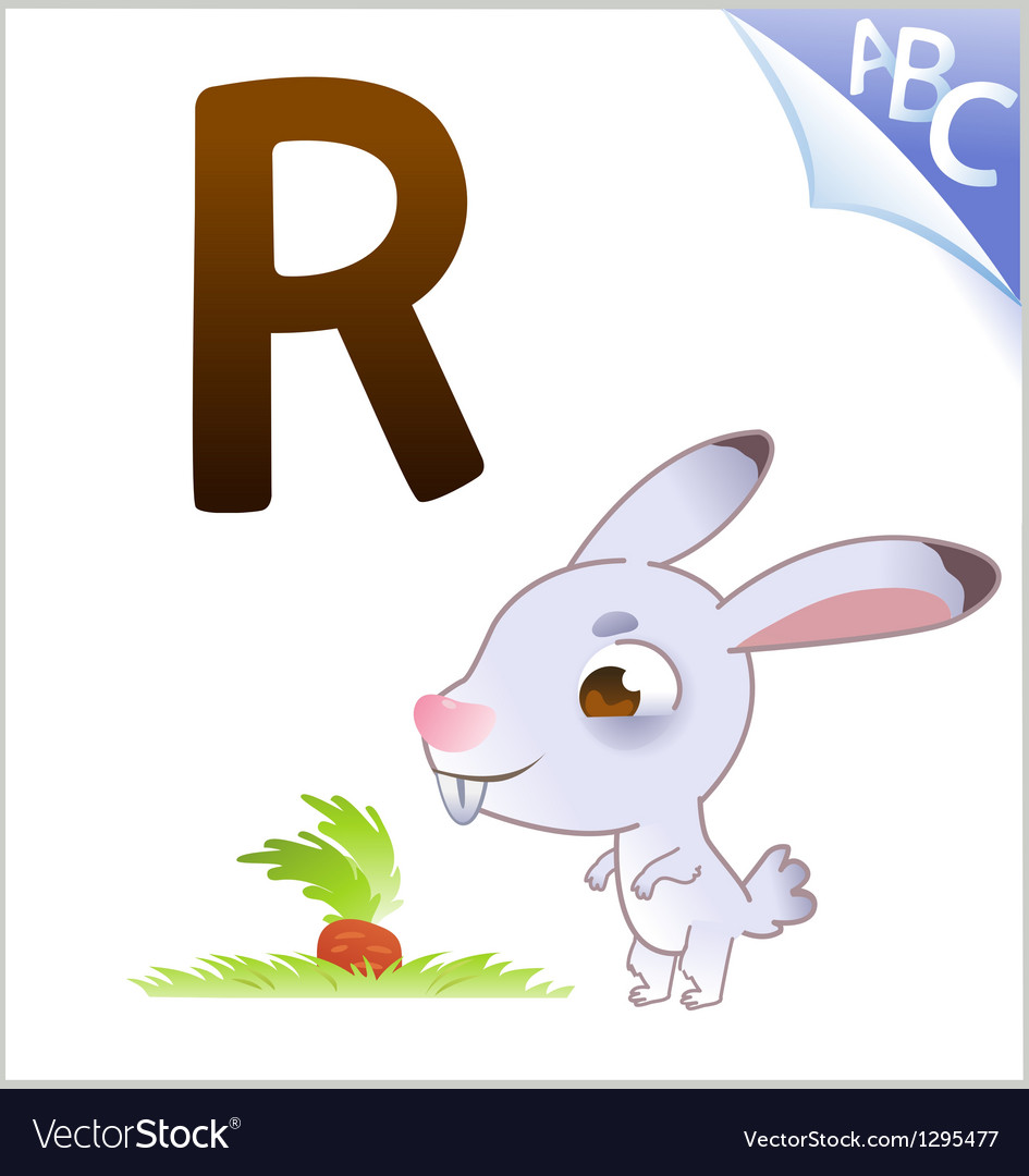 Animal alphabet for the kids r for the rabbit vector