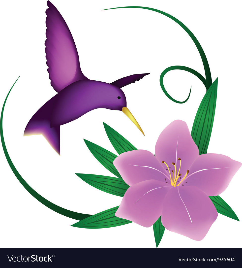 Hummingbird and lily vector