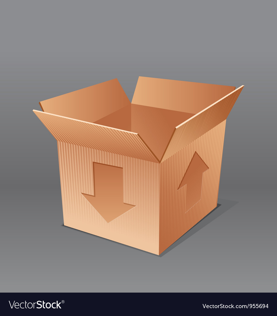 Open empty cardboard box isolated vector