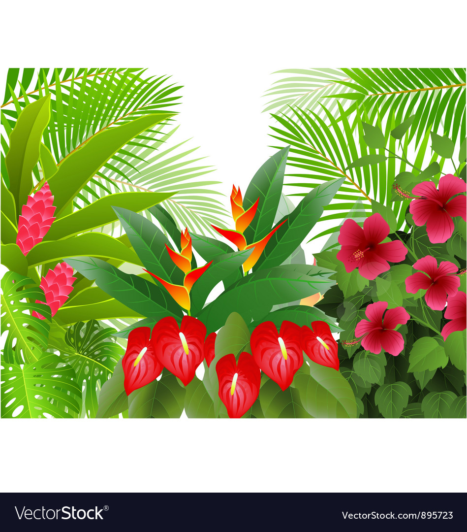 Tropical forest background vector