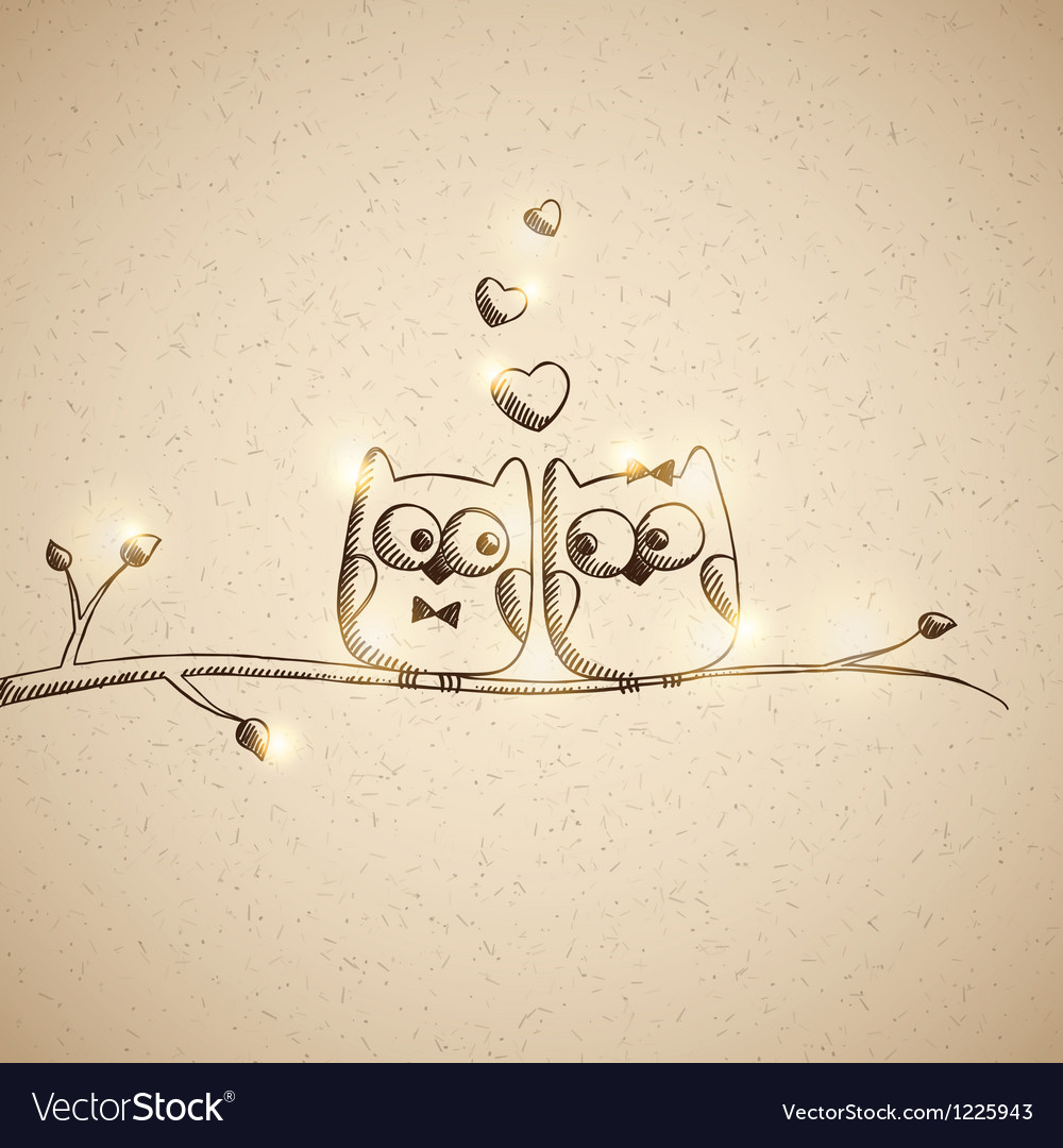 Sketch lover owls vector