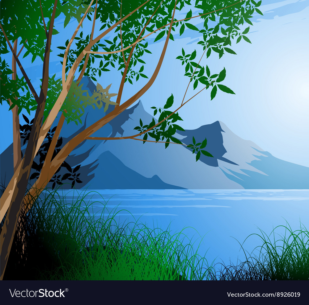 Tree and river scene