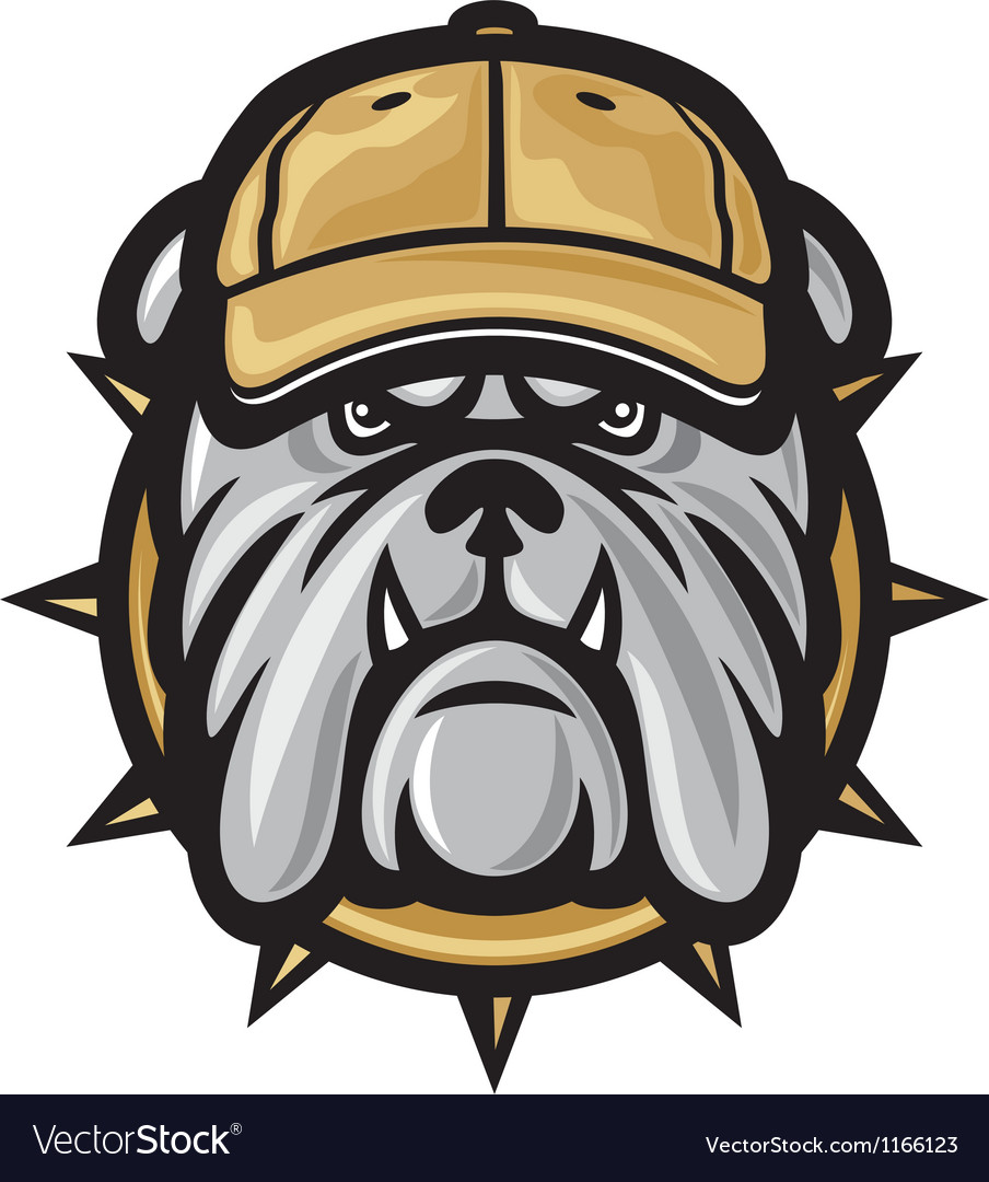 Bulldog head and baseball cap vector