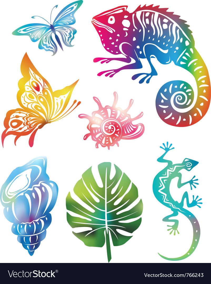 Colored objects of nature vector