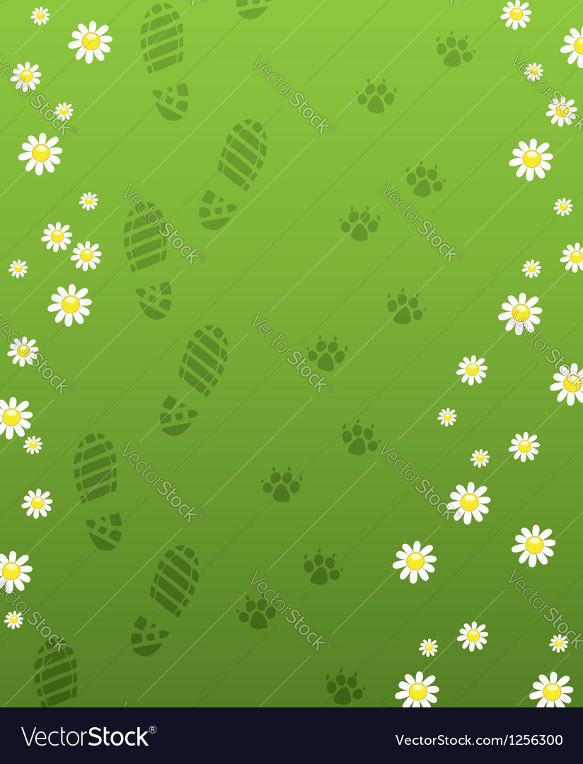 Foot prints vector