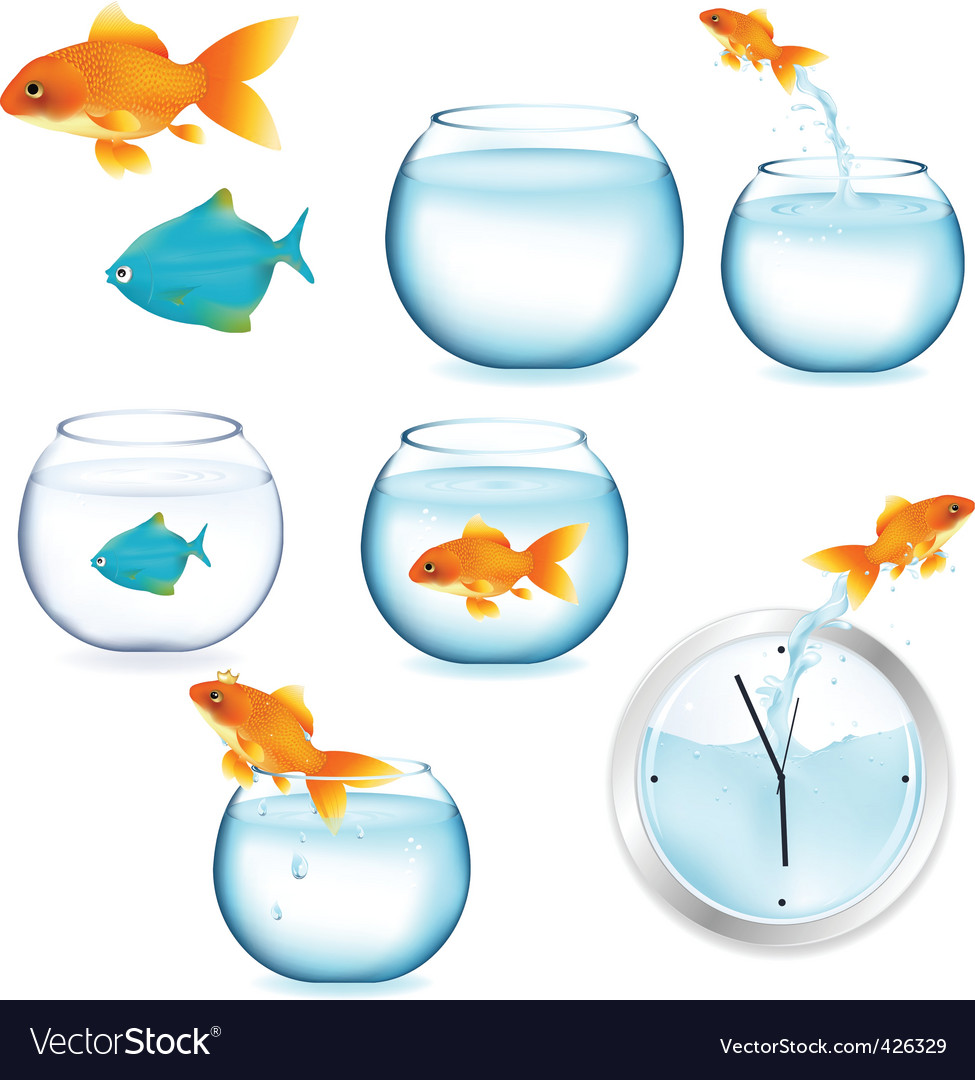 Fish and aquariums vector