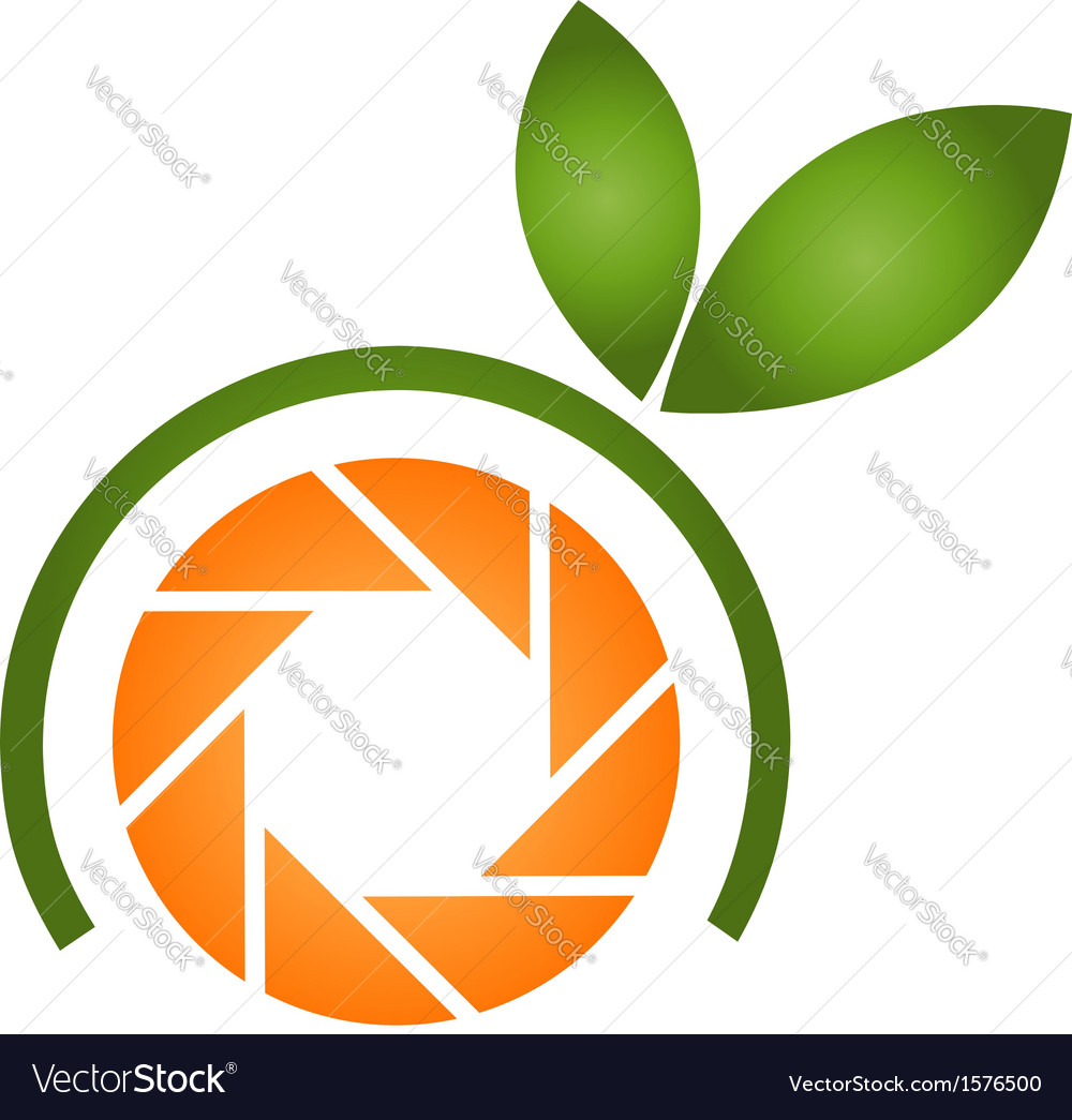 Photography logo with orange aperture and leaves vector
