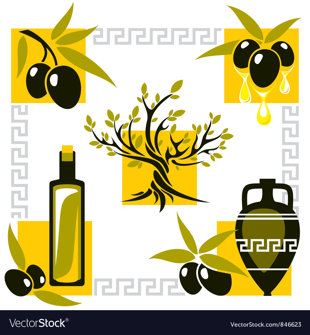 Greece olive vector
