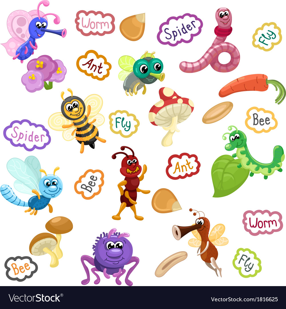 Insects with names seamless pattern vector