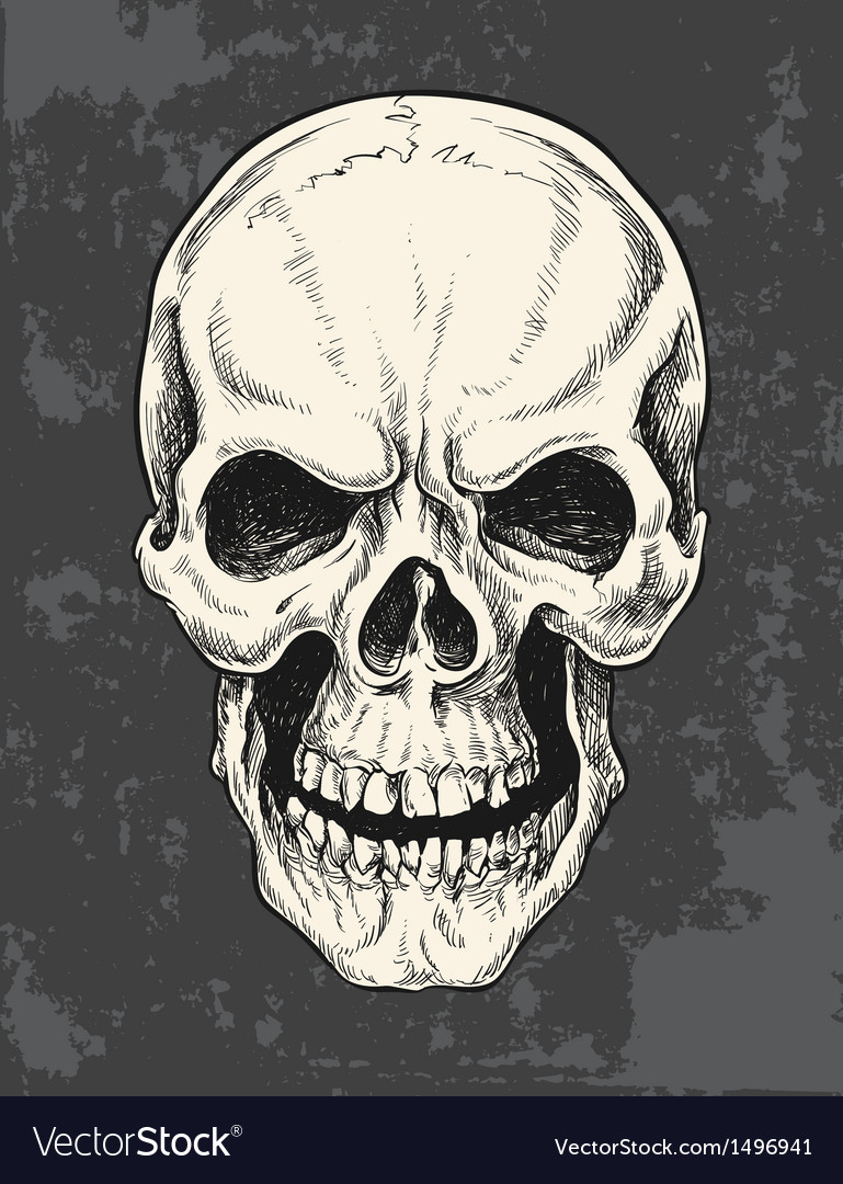 Hand drawn skull vector