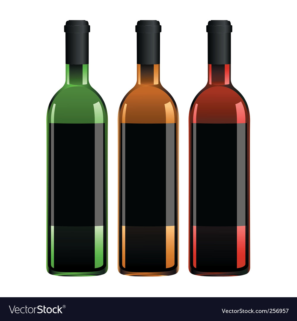 Three wine bottles vector
