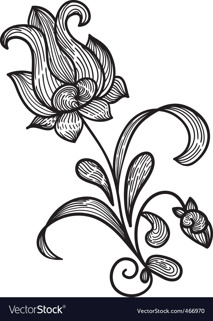 Hand Drawn Floral Design Element Vector By Alexmakarova