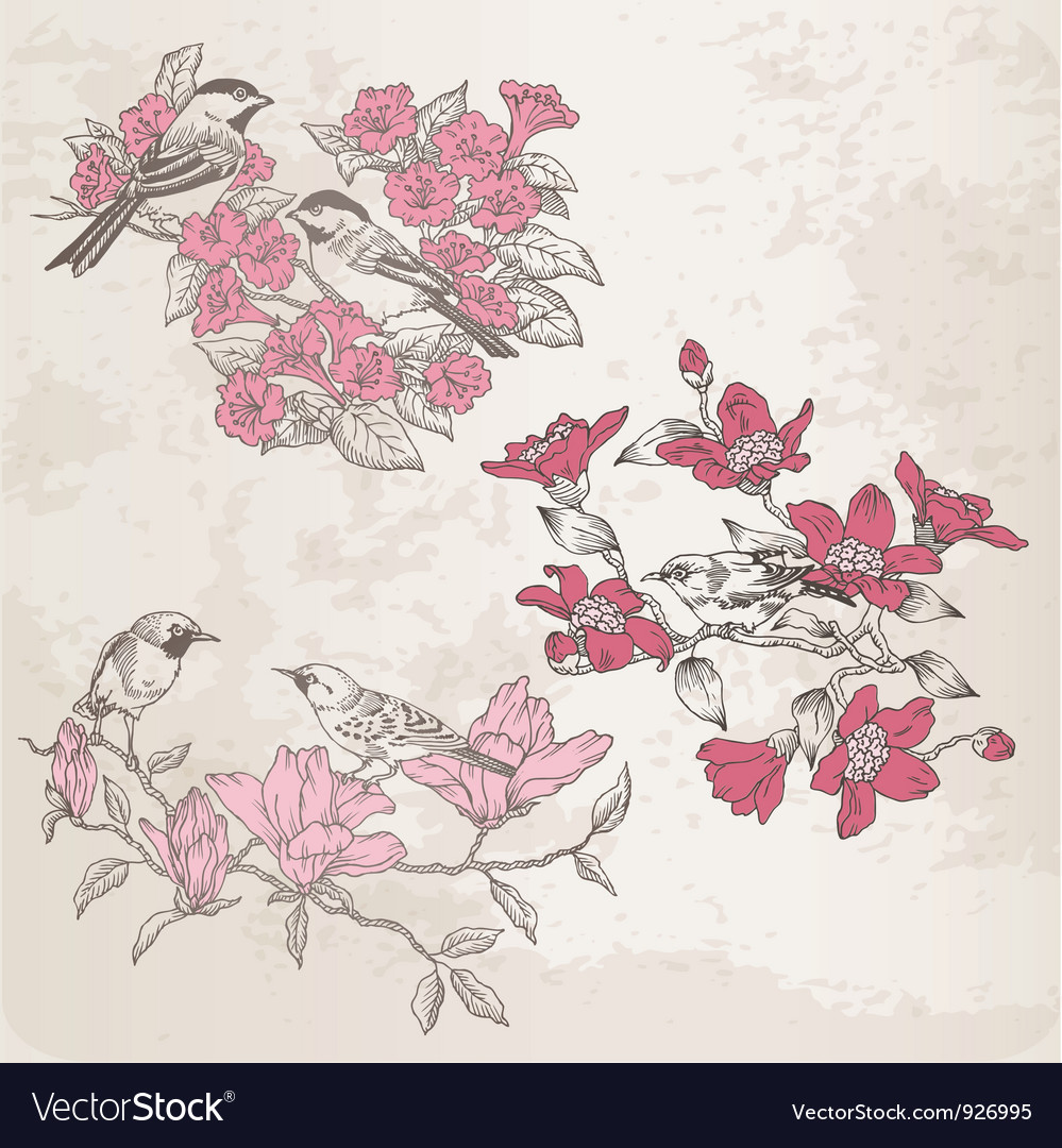 Retro  flowers and birds vector