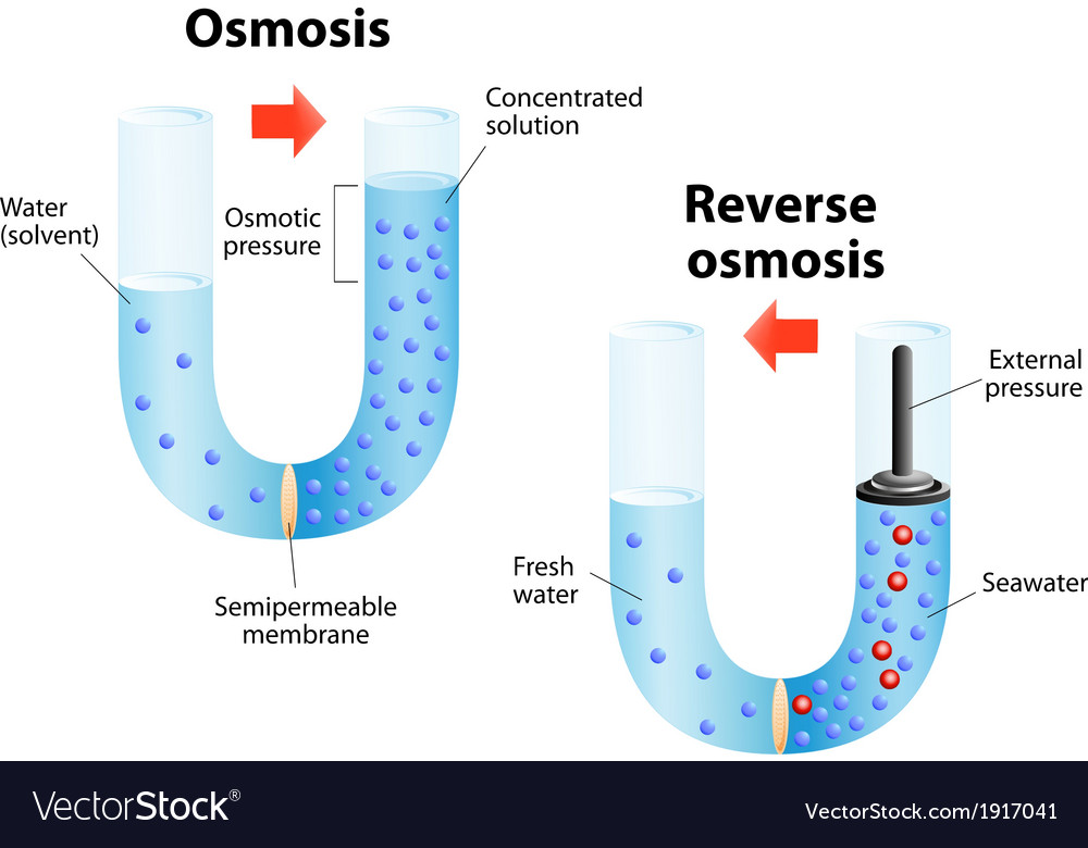 Osmosis and ... Reverse Osmosis Pdf