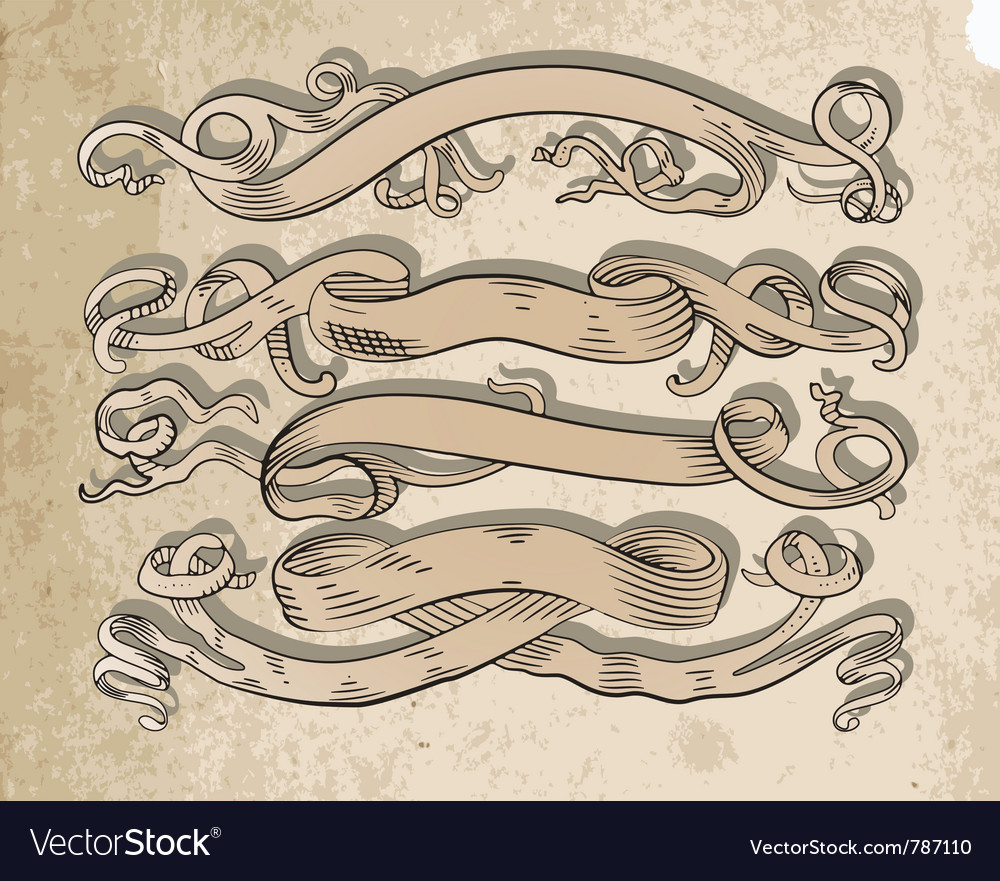 Scrolls set vector