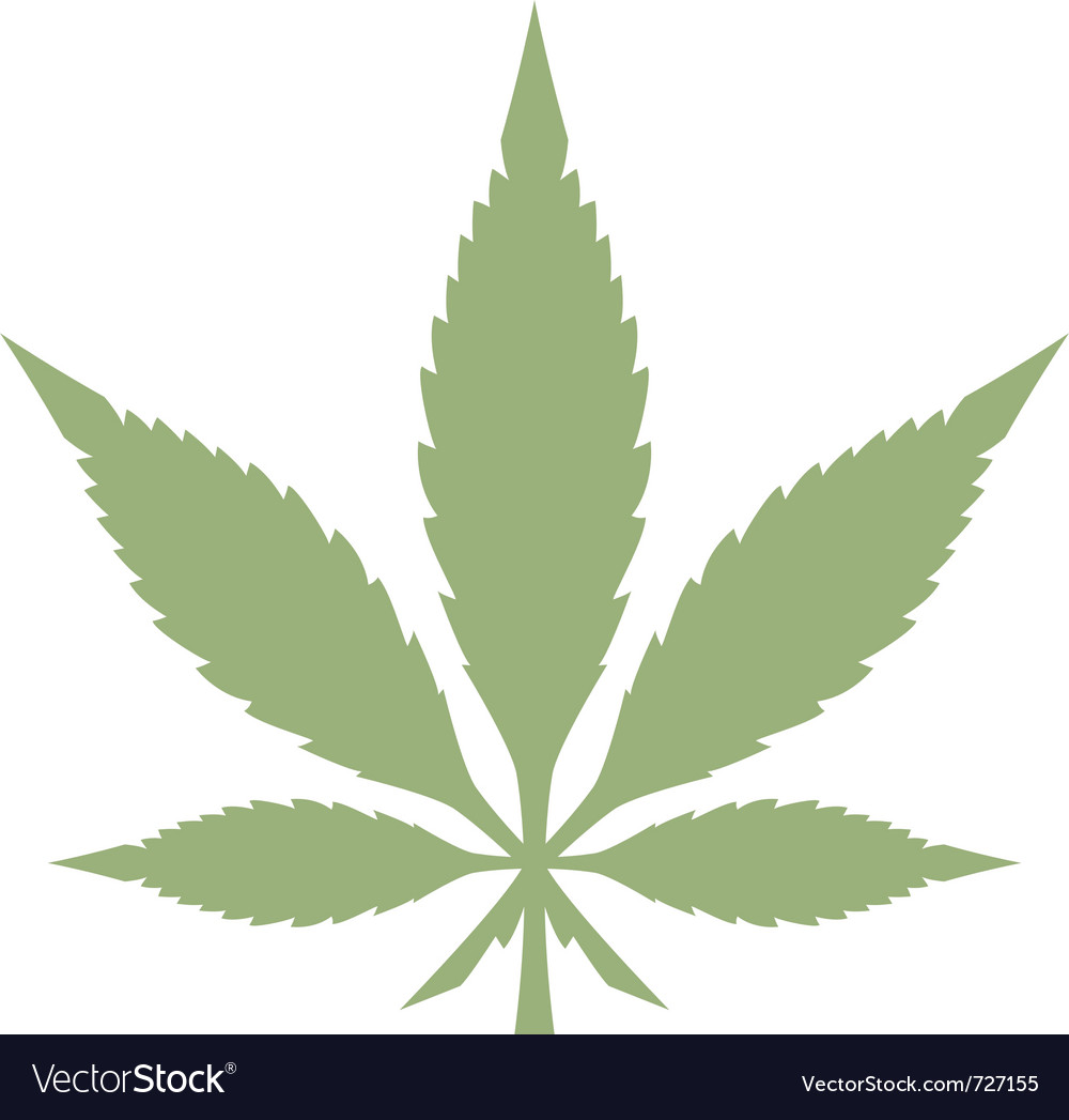 Marijuana leaf vector