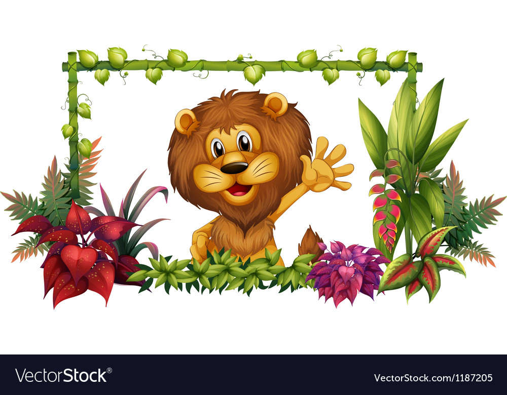A lion in a colorful frame vector