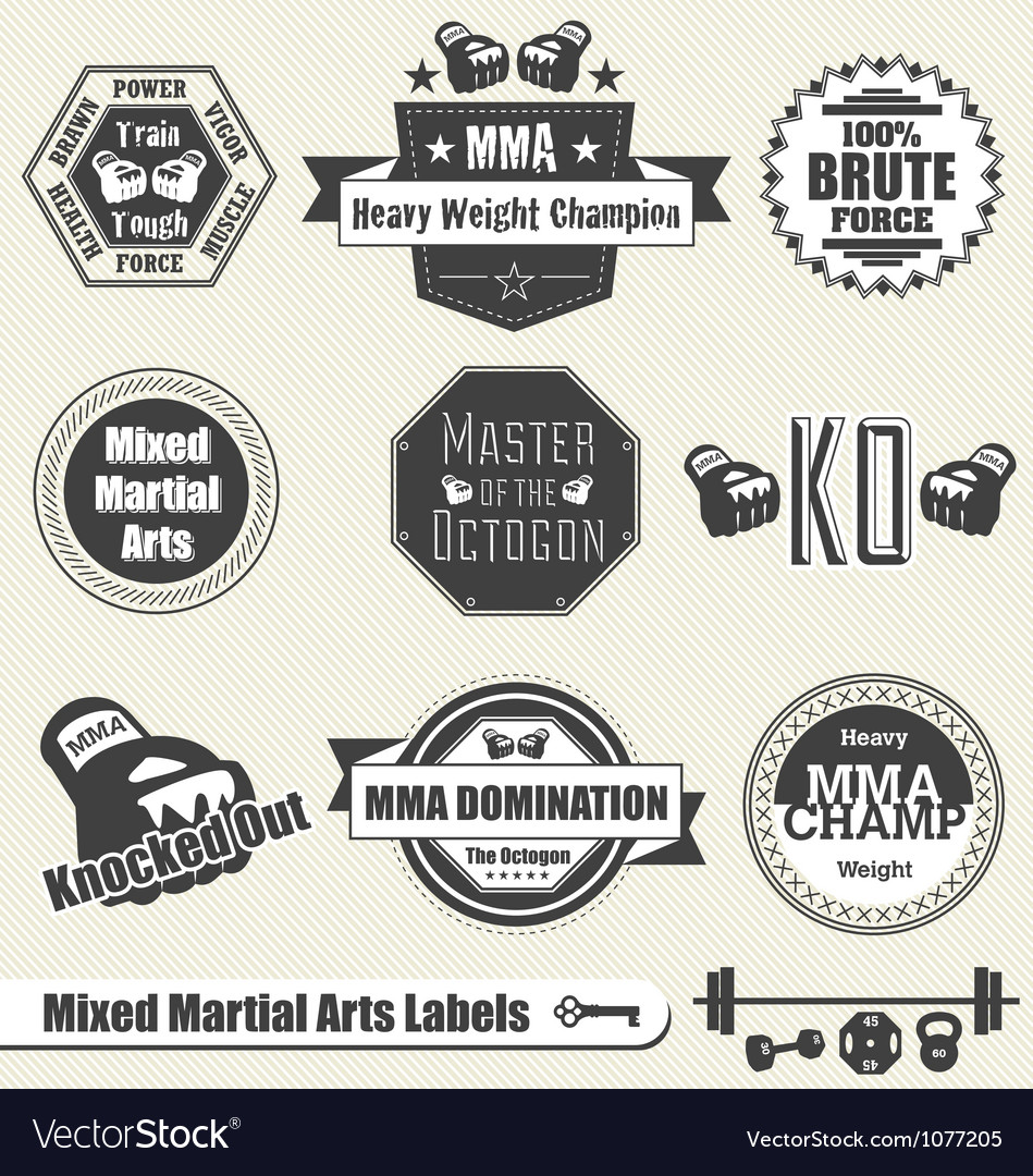 Mixed martial arts labels and icons vector