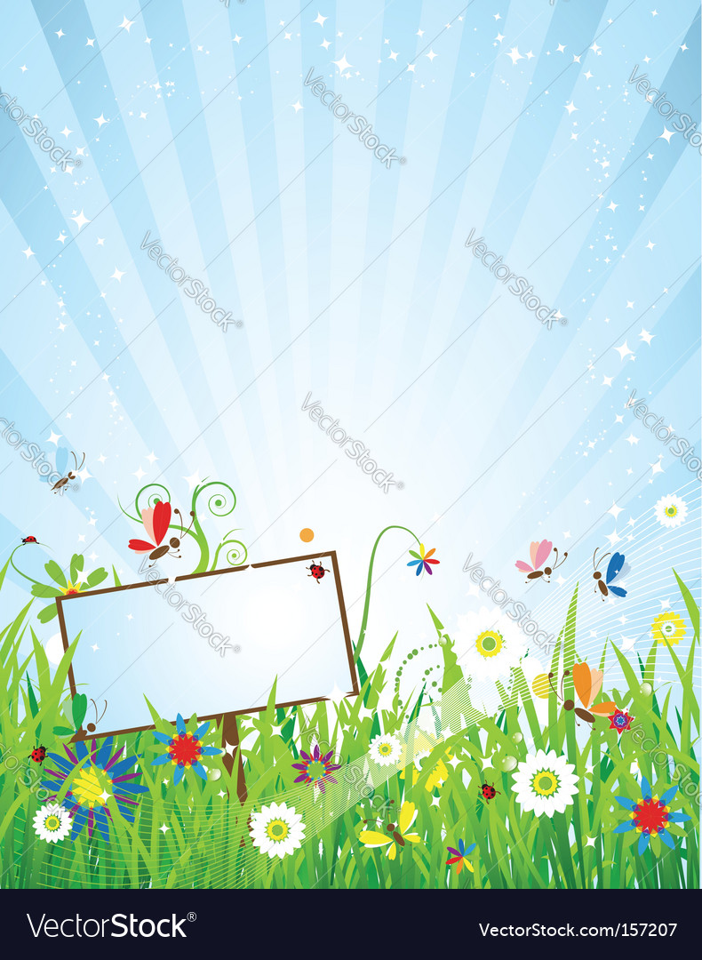 Summer meadow beautiful vector
