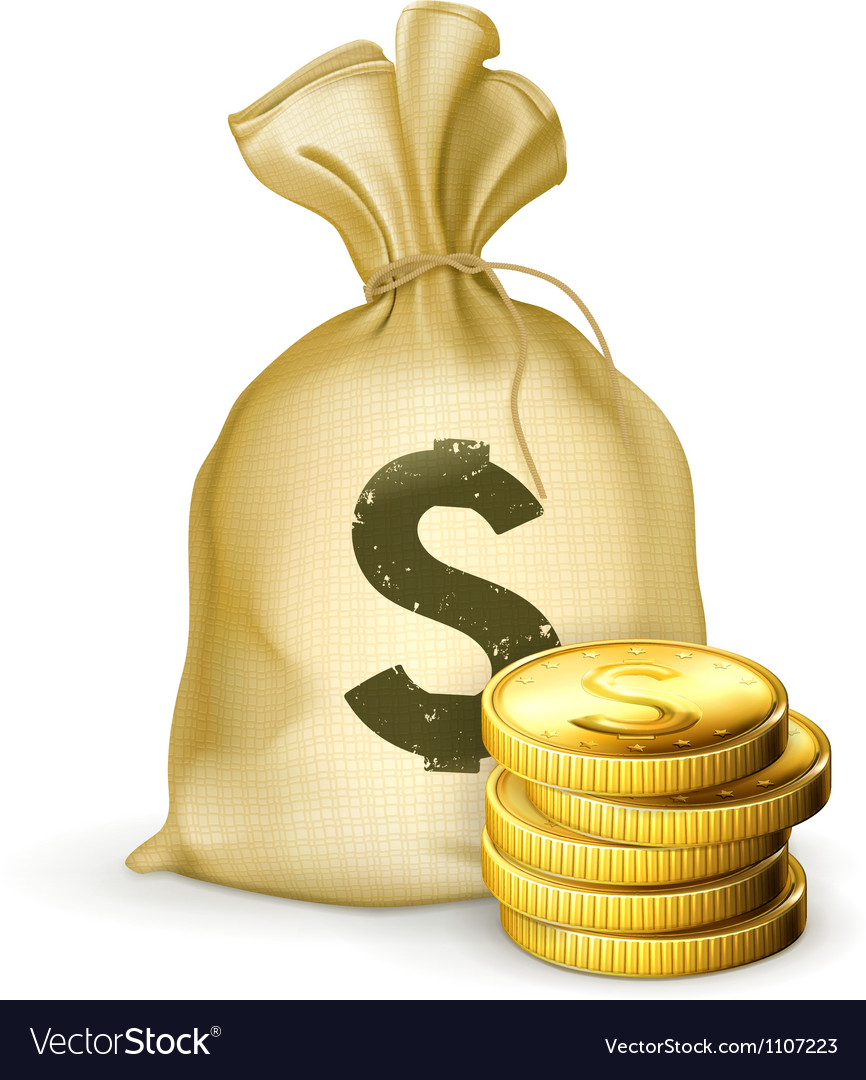 Moneybag and coins vector
