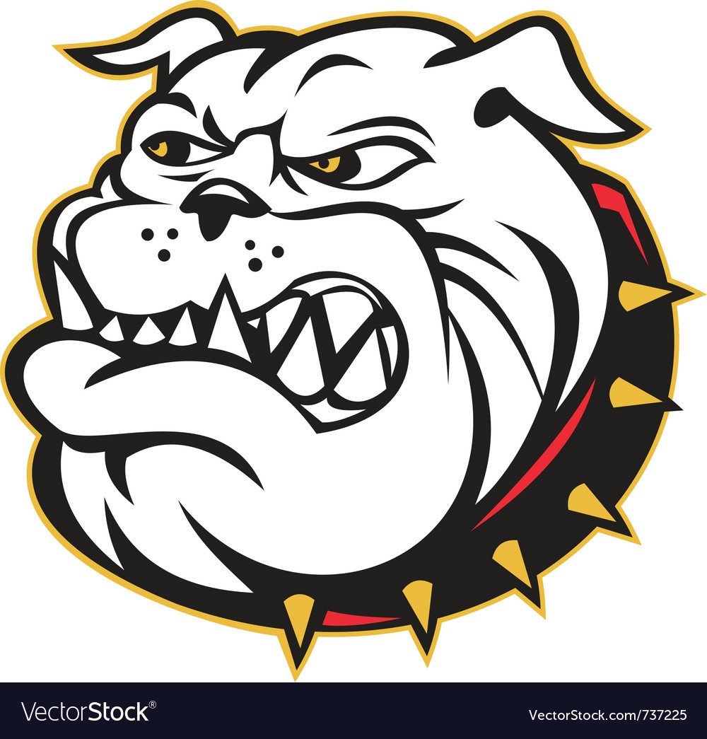 Angry bulldog mongrel vector