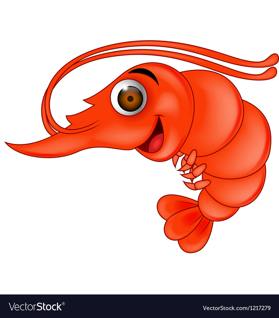 Funny shrimp cartoon vector