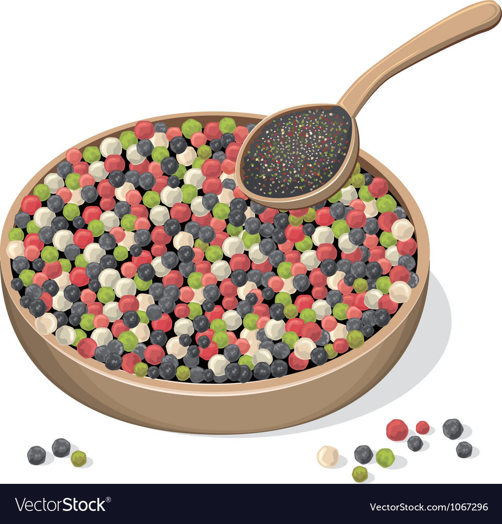 Mixed peppercorns on wooden plate and spoon vector