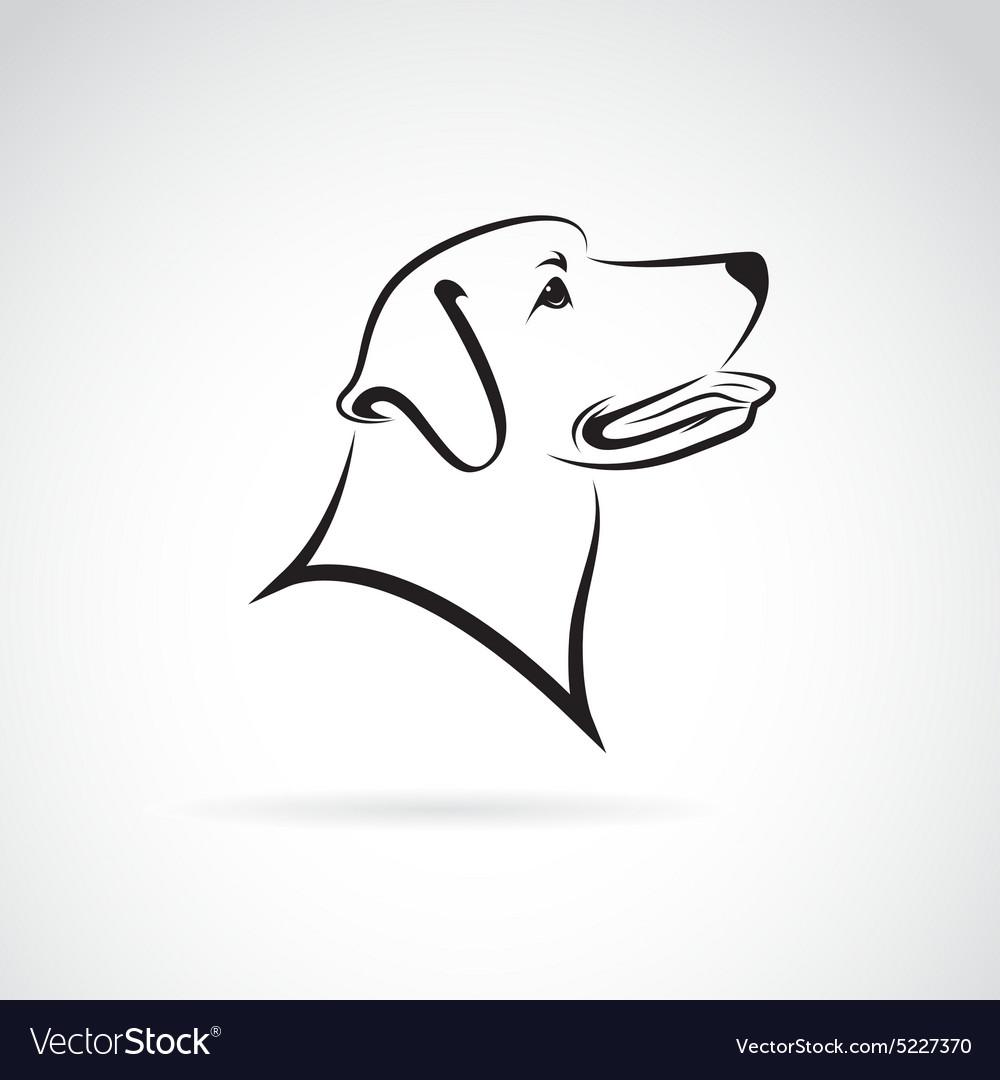 Dog head vector by yod67 - Image  5227370 - VectorStockDog Head Vector