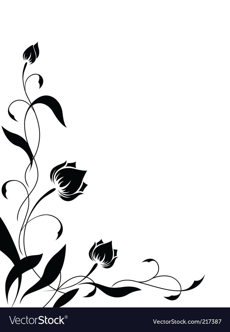 Set of black straight lace lines borders stock photo image - Flower Border Pattern Vector By Maristep Image 217387