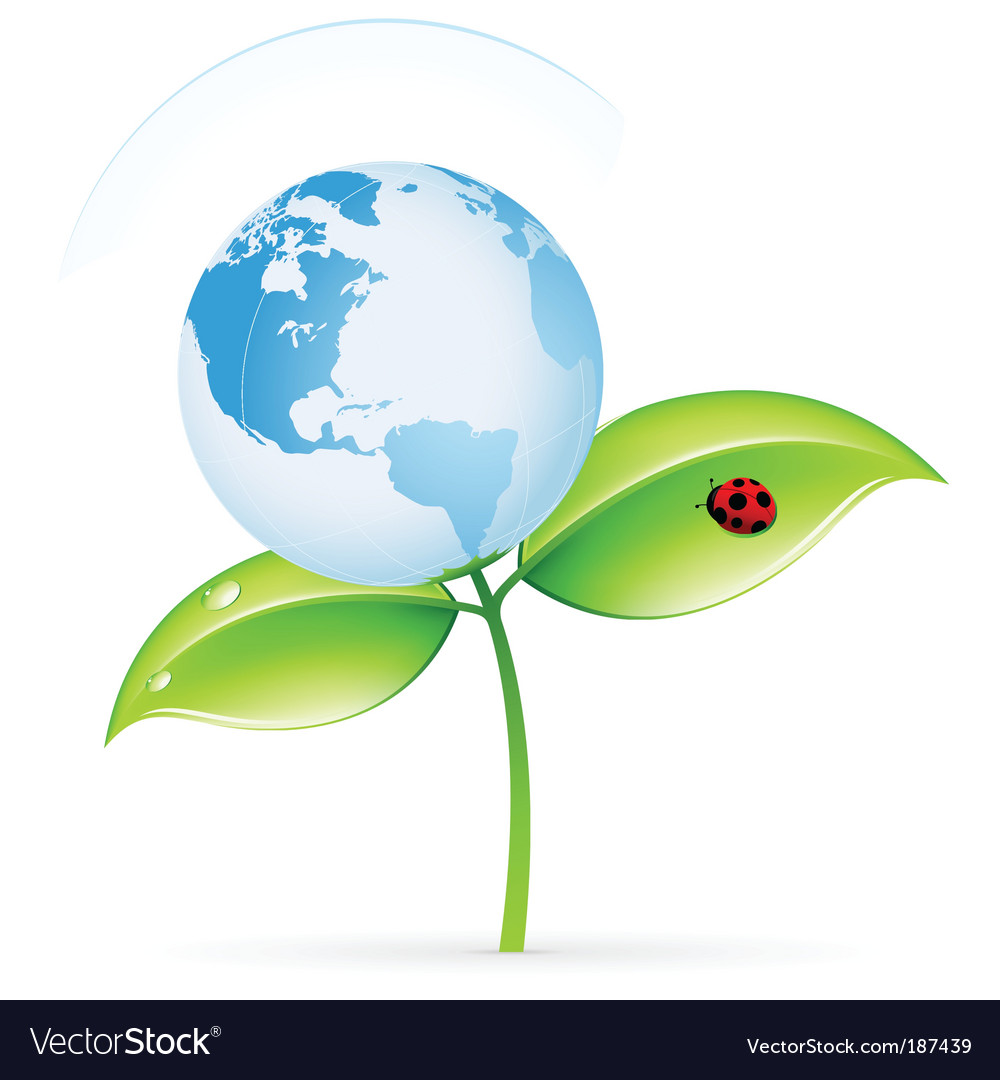 Eco icon vector