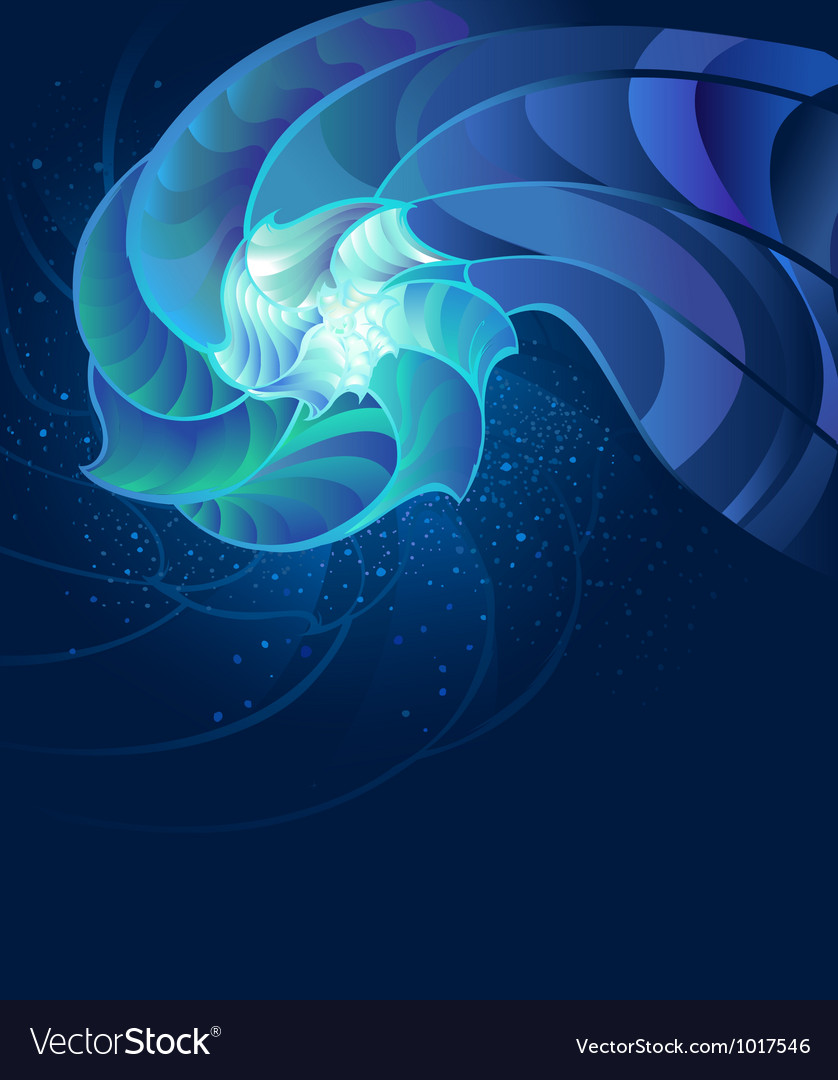 Fantastic seashell vector