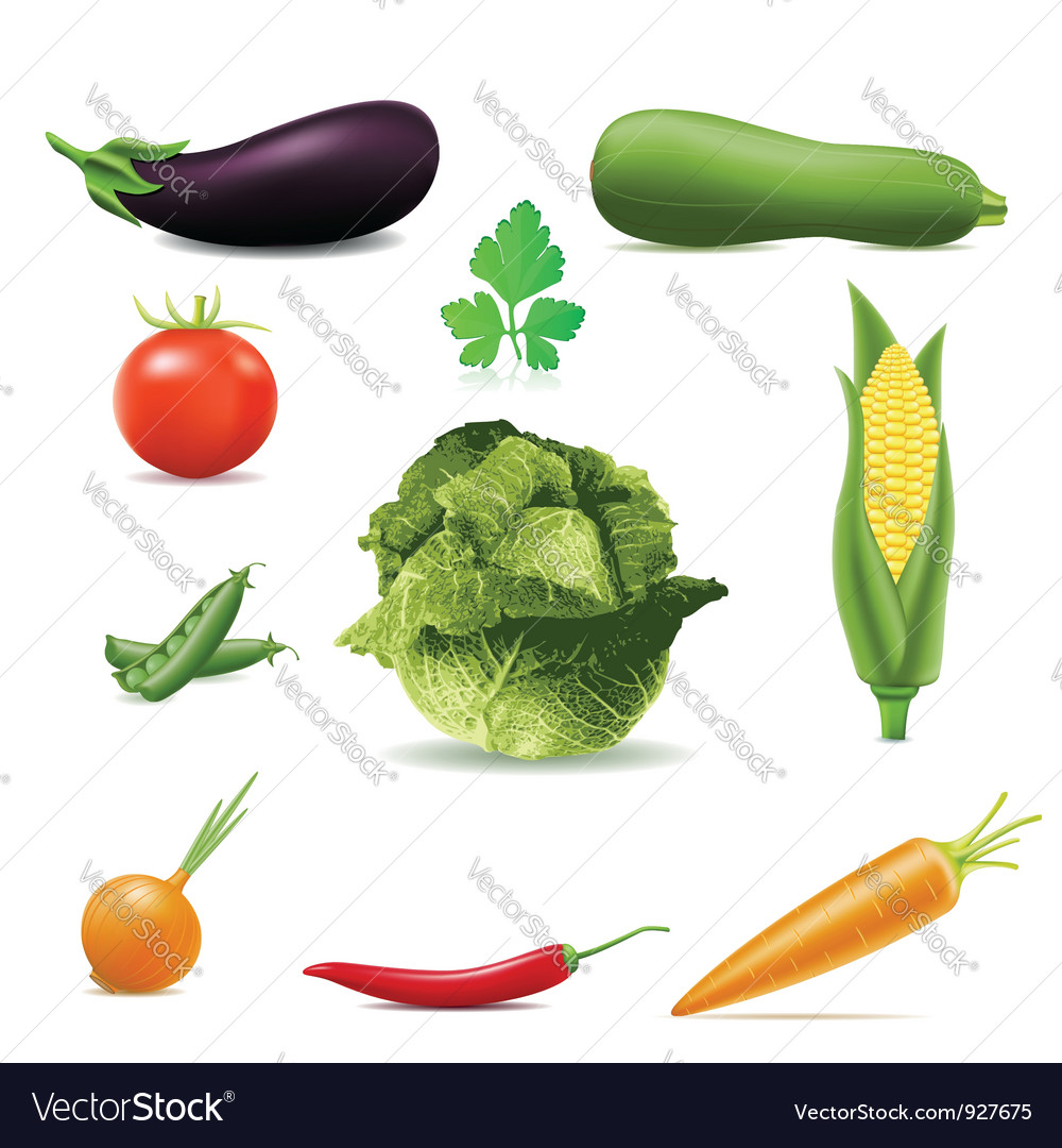 Set of icons vegetables vector