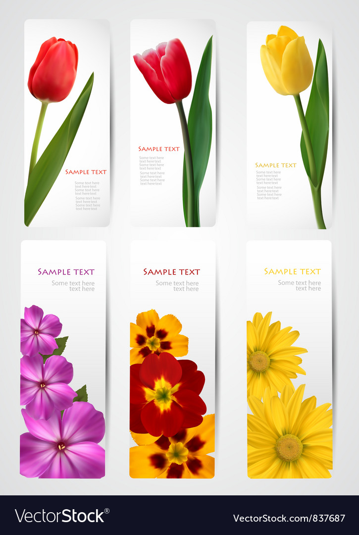 Set of banners with colorful flowers vector