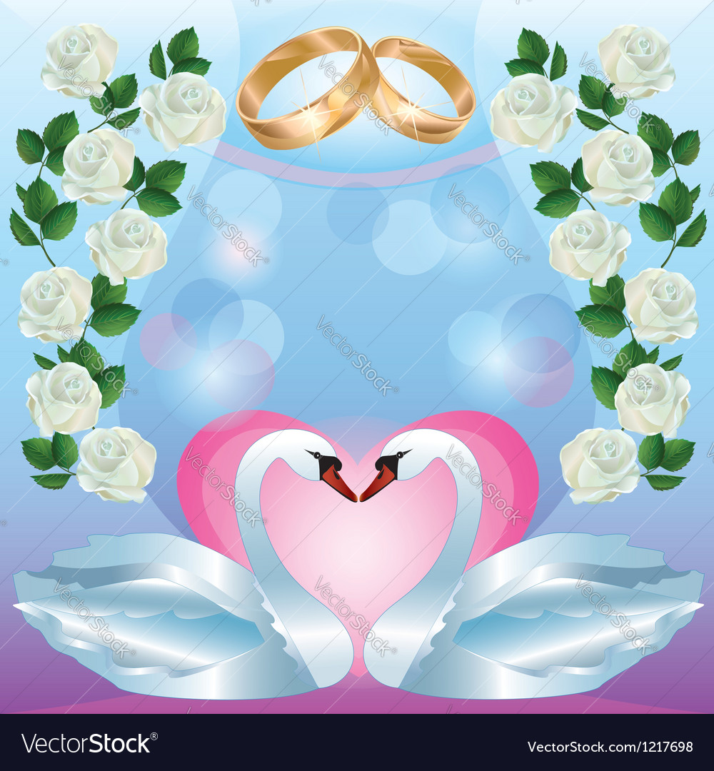 Wedding greeting or invitation card with swans vector
